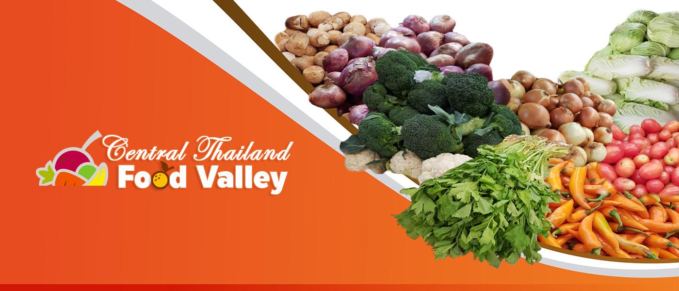 การบริหารจัดการเพื่อพัฒนา Food Valley ภาคกลาง ปี 2559